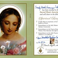 Embracing Newtown Mass Cards 208