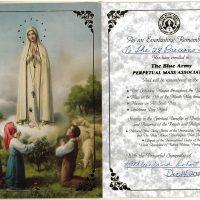 Embracing Newtown Mass Cards 245