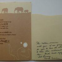 Embracing Newtown Volunteer Favorite Letters 216
