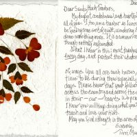 Embracing Newtown Volunteer Favorite Letters 29
